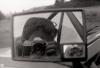 objektivy Nikon AF - poslední příspěvek od LaarsenGranz