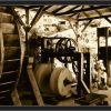 Vyrobna olivového oleje