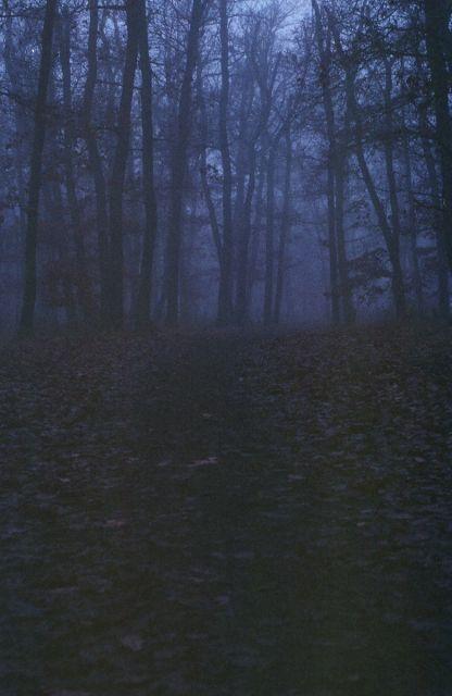 Temny Kunratak