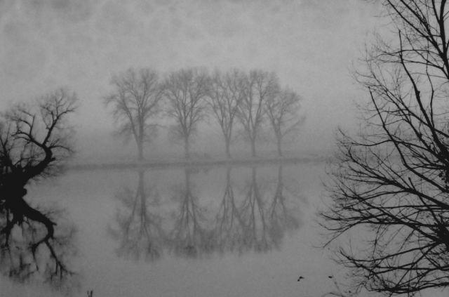 Výsledek obrázku pro mlha ostrov