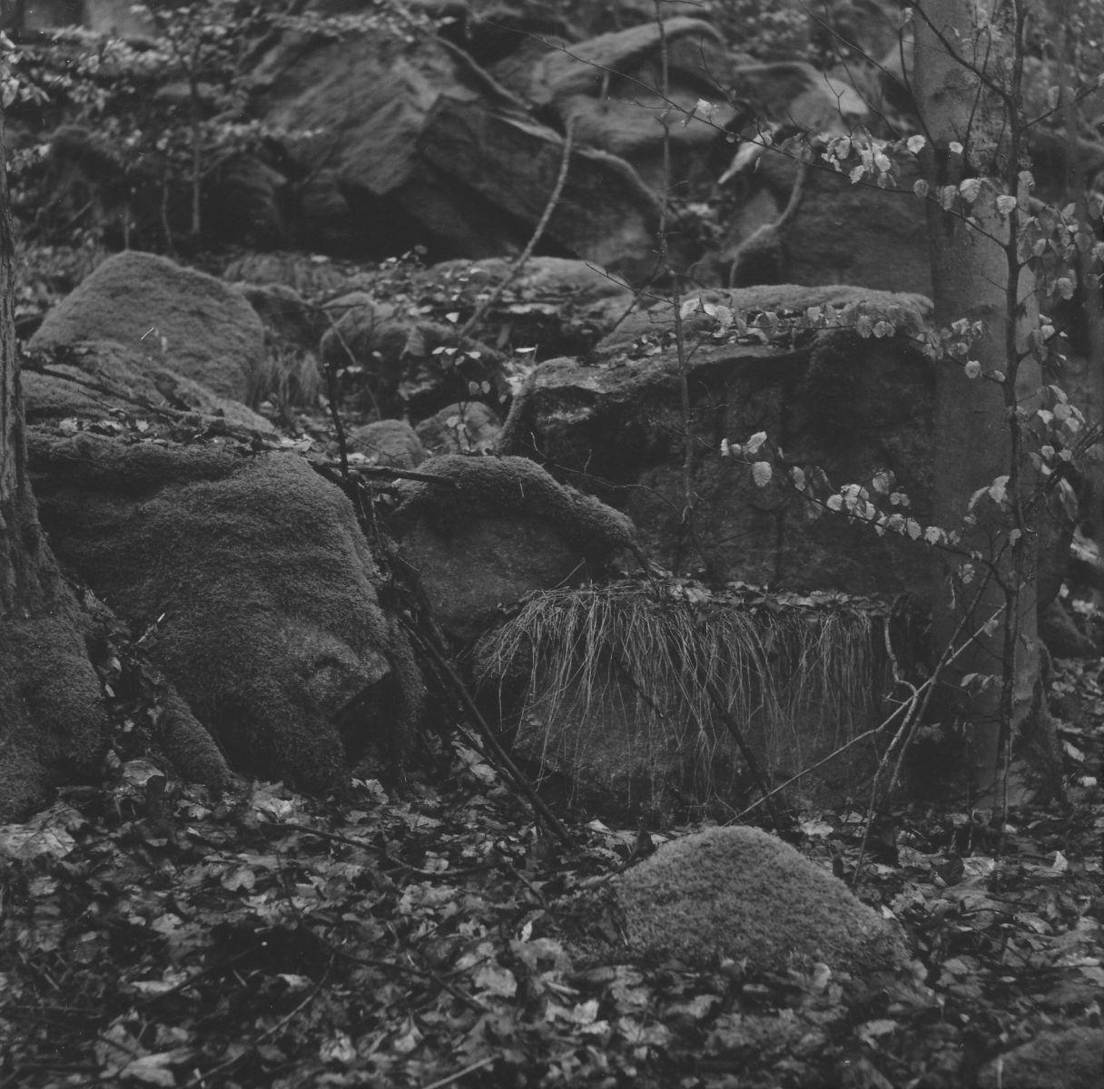 Mariánské Lázně - Žižkův vrch