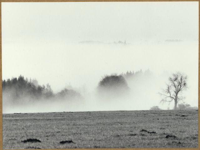 Pohled na Ovesné Kladruby v Mlze