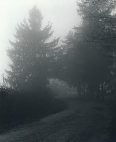 Světlá cesta