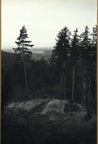 Pohled z Lazurového vrchu 2015