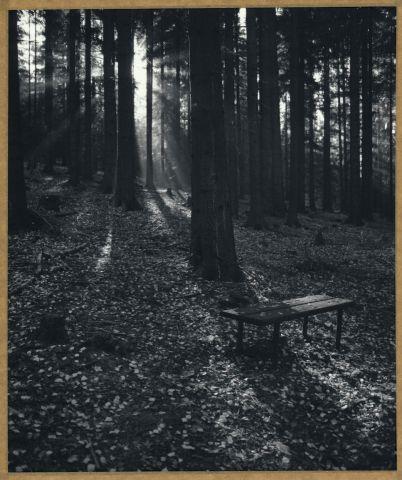 Opuštěná lázeňská lavička