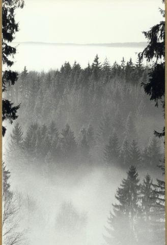 Pohled z Holiny u Pístova 2014/ii