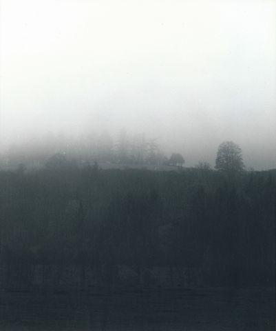 V mlze a dešti